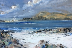 looking-out-from-Iona